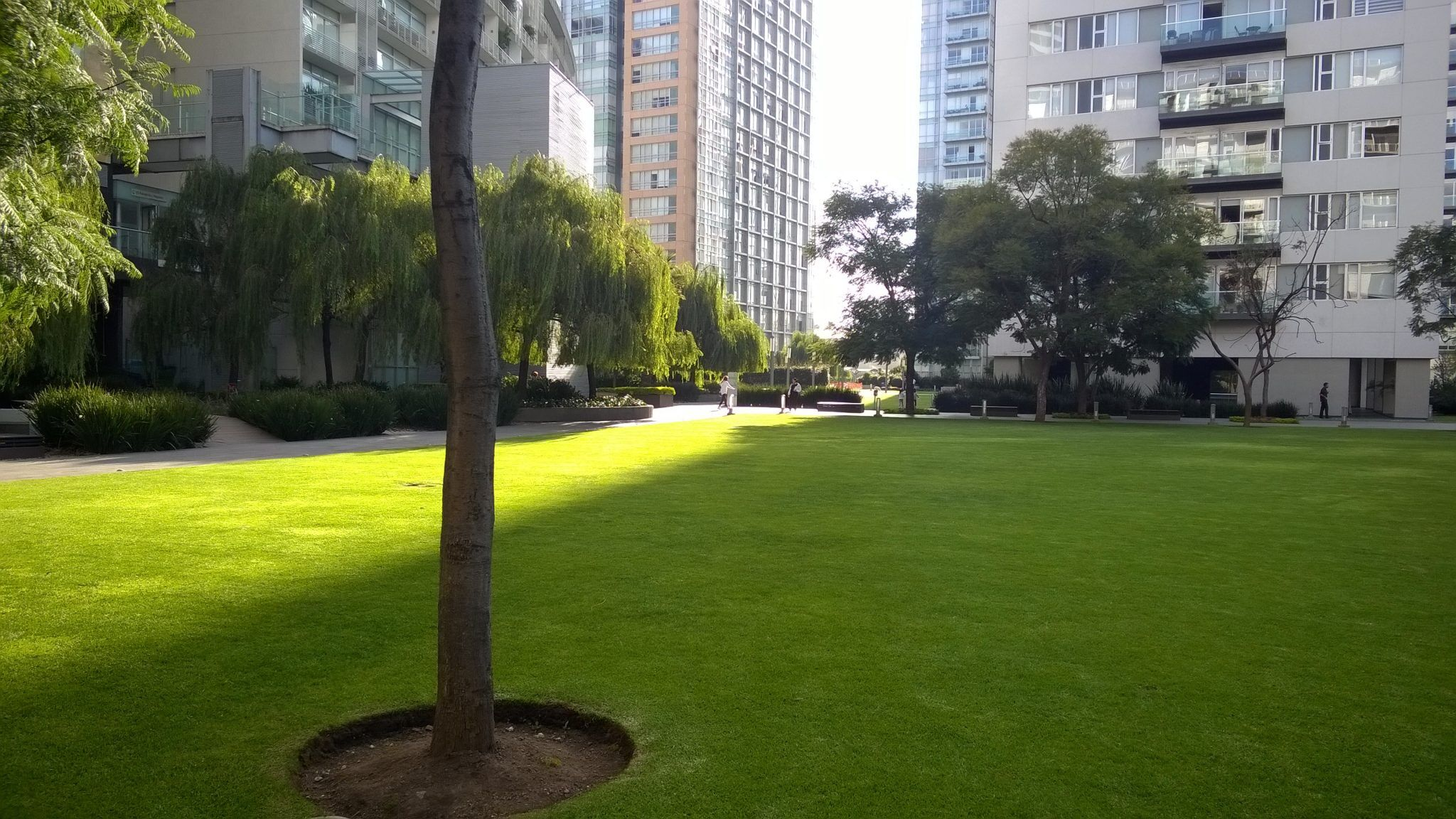 Departamento en Venta en Parques Polanco. 2 Recámaras y dos terrazas. Area Verde